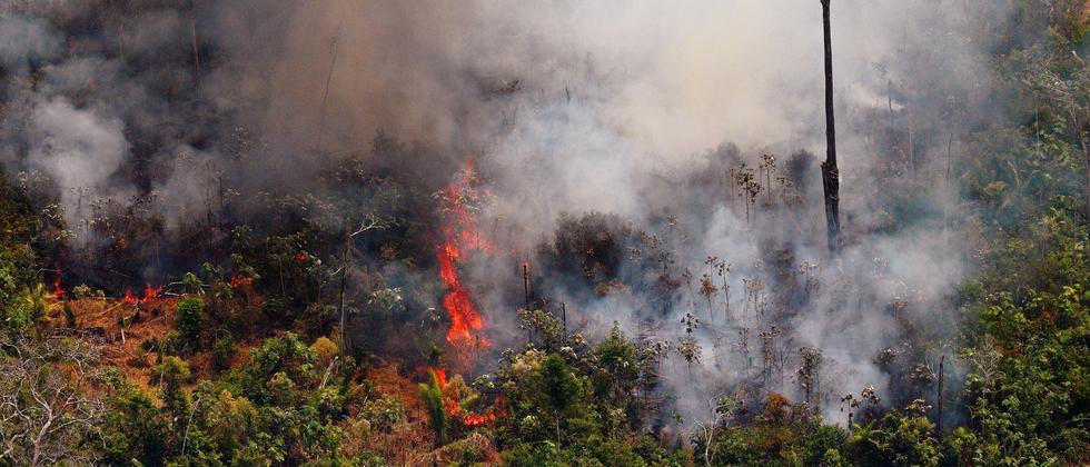 Amazonas: Brasilianische Polizei ermittelt wegen Brandstiftung