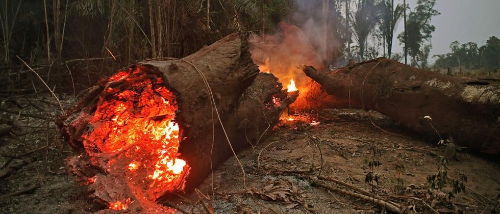 Gipfeltreffen: G7-Staaten einigen sich auf internationale Hilfe gegen Amazonasbrände