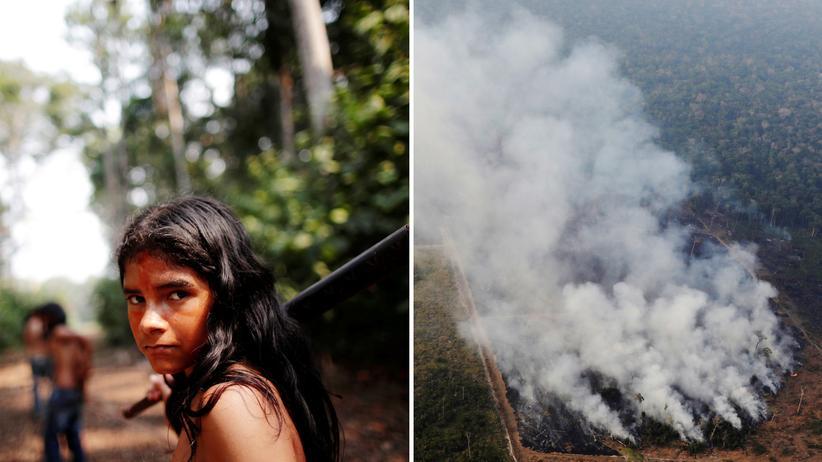 Brasilien: Der Urwald soll brennen!