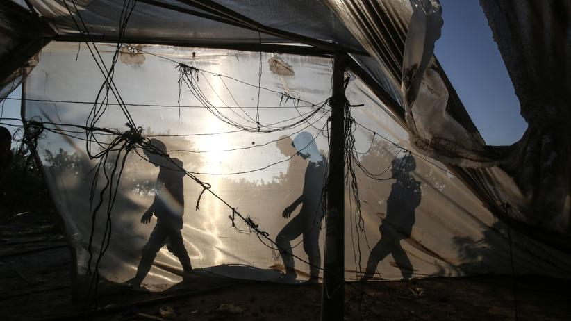 Gaza: Palästinenser an einem Gewächshaus bei Khan Yunis, das durch israelische Luftangriffe beschädigt wurde (Archiv)
