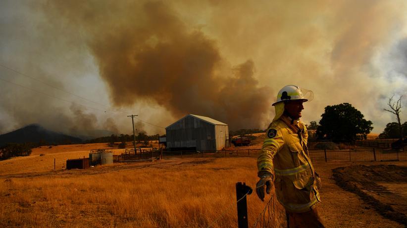 Australische Regierung: Erschöpft: Feuerwehrmann im australischen Tumburumba