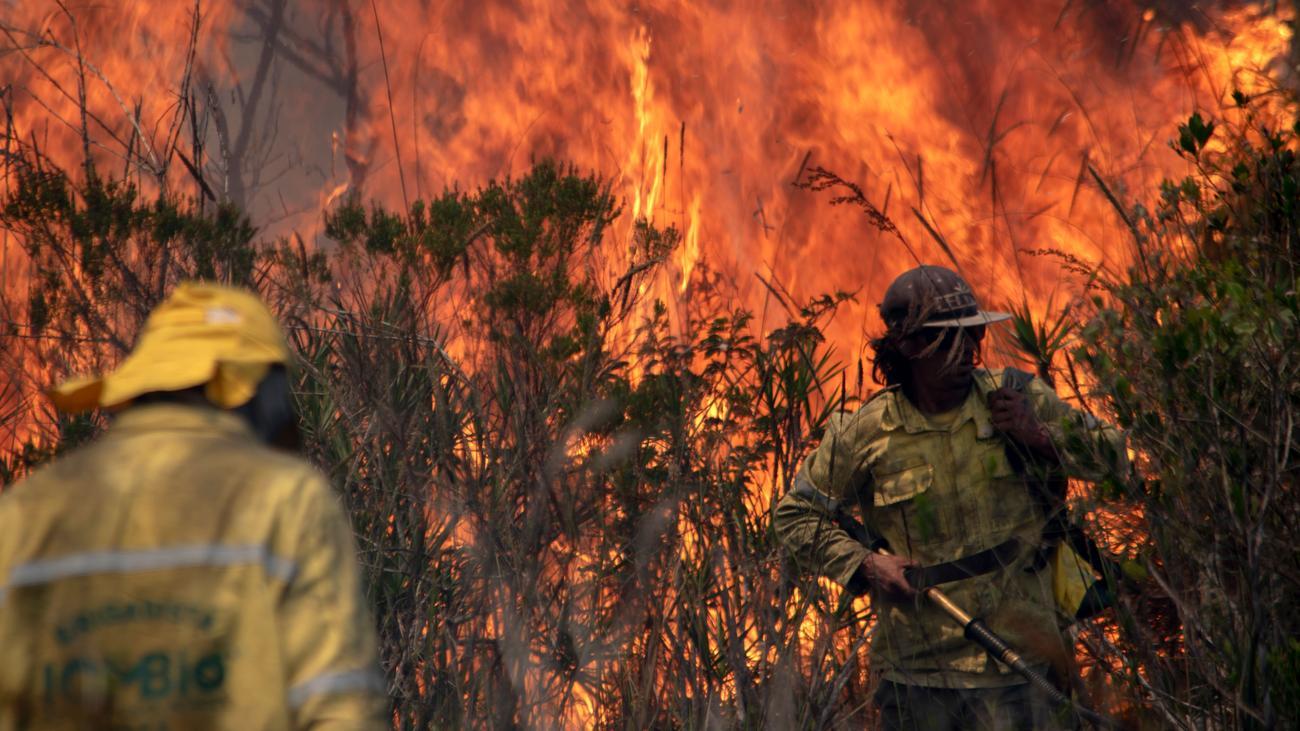 Waldbrände: Umweltbehörde in Brasilien setzt Brandbekämpfung aus