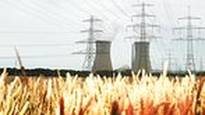 Brüderle versus Röttgen: Ein Fernduell um die Atomkraft