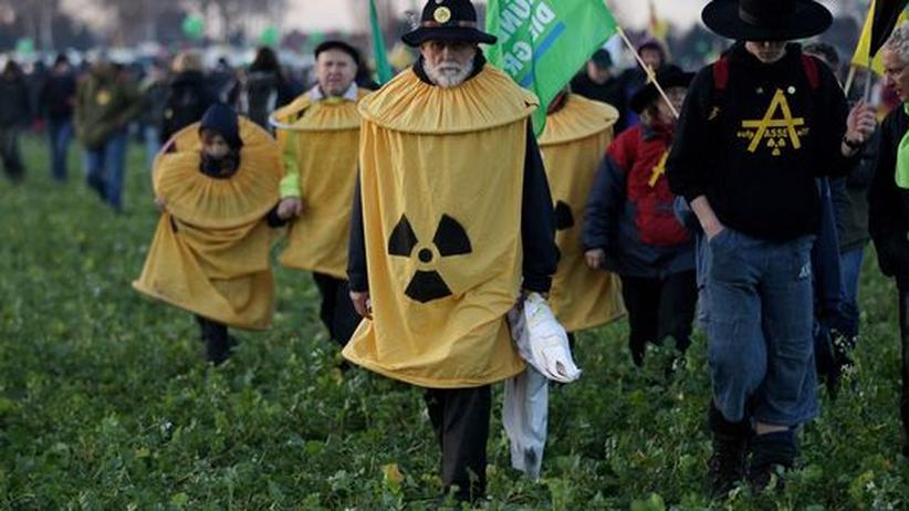 Castor-Transport: Atomkraft-Gegner durchqueren ein Feld in Dannenberg