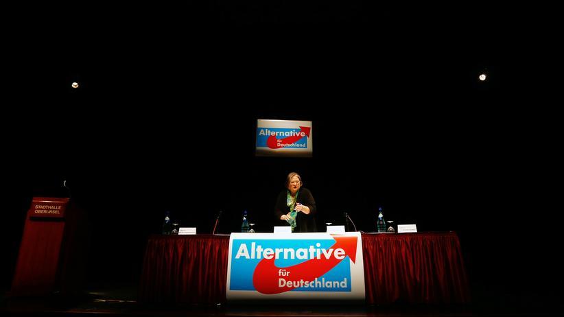 Alternative für Deutschland: Die Anti-Euro-Kämpfer