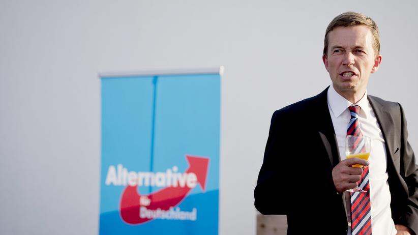 Wahl-Umfrage: AfD-Chef Bernd Lucke (Archiv)