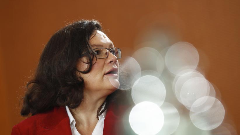 Andrea Nahles Familienpolitik SPD