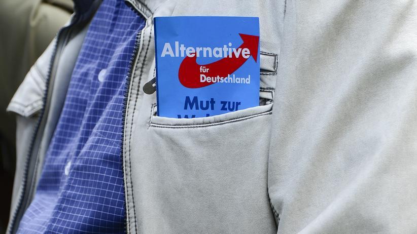Ein AfD-Flyer im Bundestagswahlkampf 2013