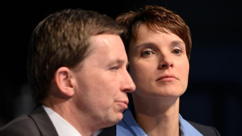 Lucke Petry AfD