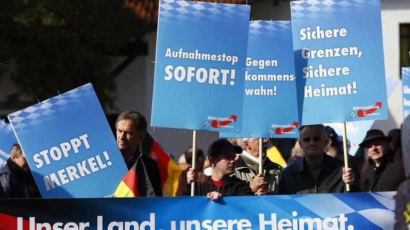 Politik, Alternative für Deutschland ,    SPD,     Umfrage,     CDU,     Grüne,     Die Linke