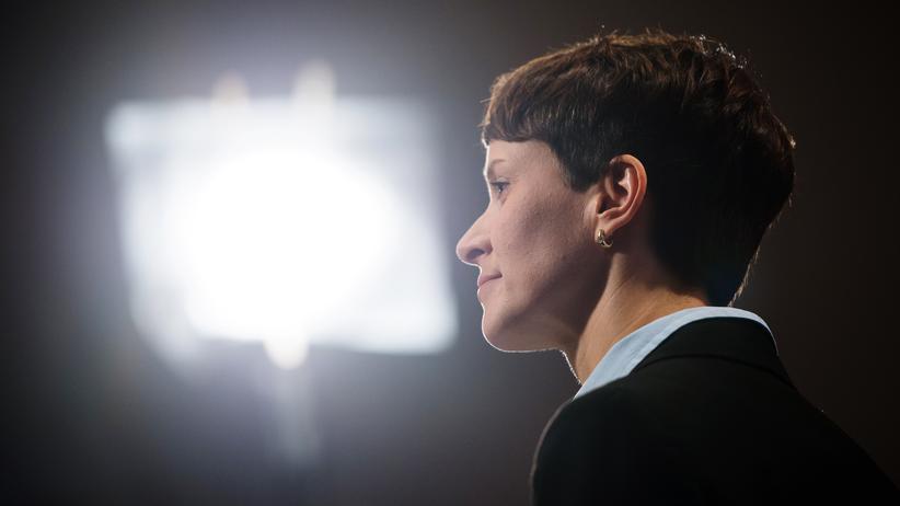 Parteienfinanzierung: AfD-Chefin Frauke Petry