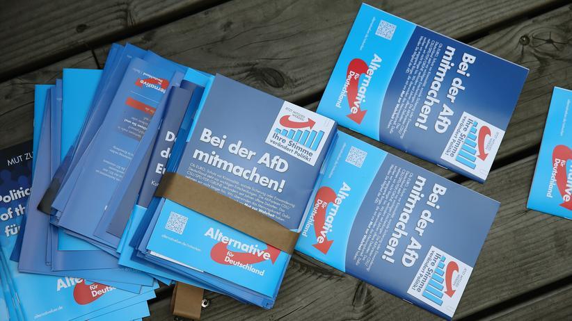 Landtagswahlen: Werbebroschüren der AfD