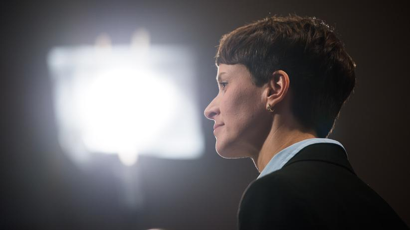 AfD: AfD-Vorsitzende Frauke Petry im November 2015 in Hamburg