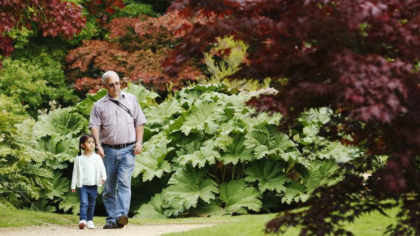 Altersversorgung: Was die Rente rettet
