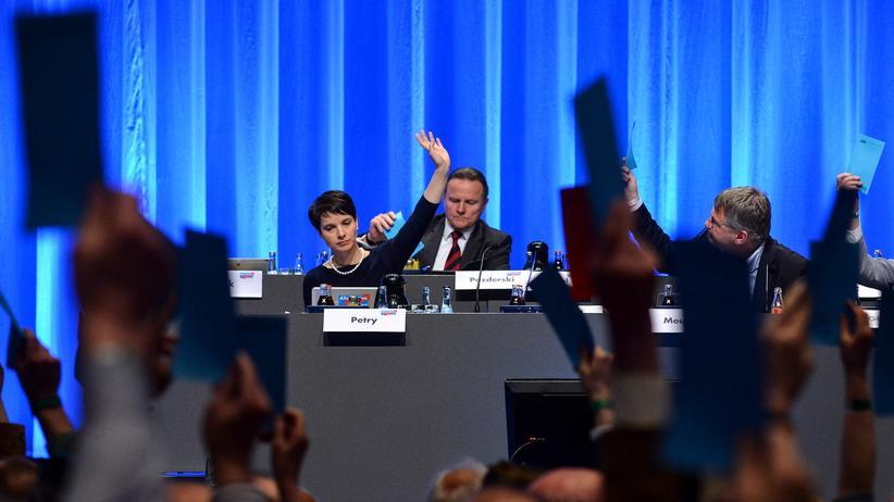 Eine Abstimmung auf dem AfD-Parteitag in Stuttgart