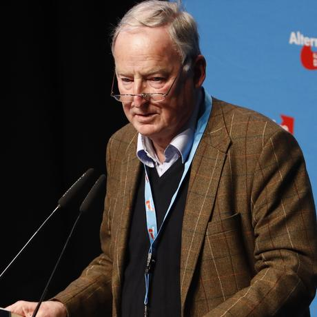 Alexander Gauland: Vorsitzender der AfD-Fraktion