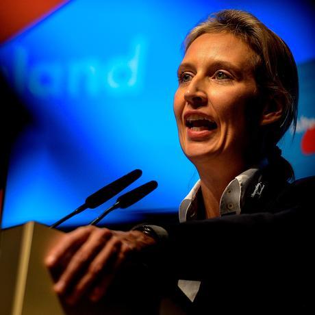Alice Weidel: Spendenaffäre in der AfD