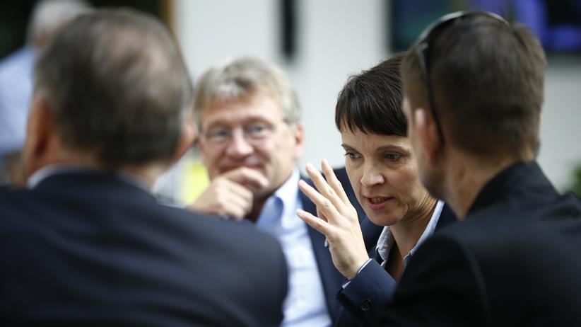 AfD: AfD-Bundessprecher Jörg Meuthen mit Blick auf die Co-Vorsitzende Frauke Petry