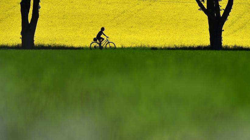 Ein Dorf in Bayern in den Farben Schwarz Gelb und Grün