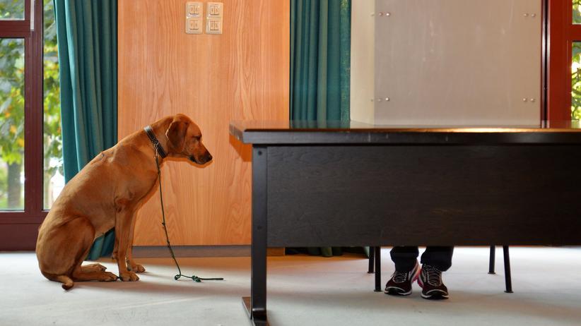 Wahlverhalten: Demokratie ist wie ein Muskel, der trainiert werden muss
