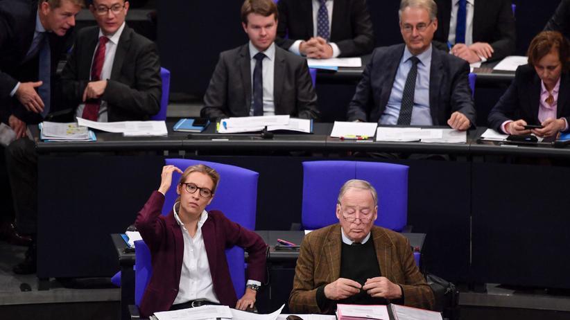 AfD im Bundestag: Hauen und Jammern
