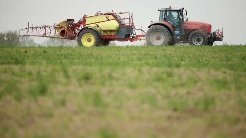 Sondierungen: Union und SPD sollen Glyphosat-Einigung erreicht haben