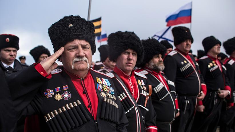 AfD: Bundesregierung kritisiert Krim-Besuch von AfD-Politikern