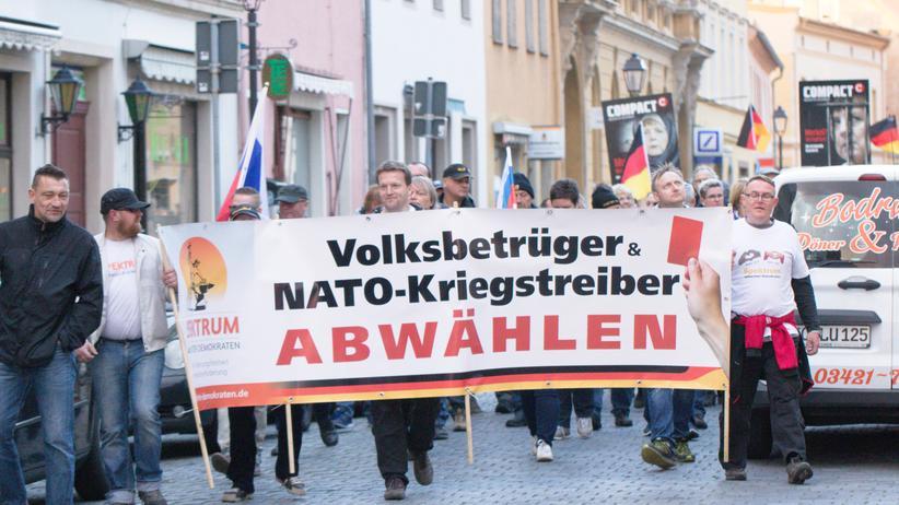 Rechtspopulismus: Die Russland-Fans der AfD