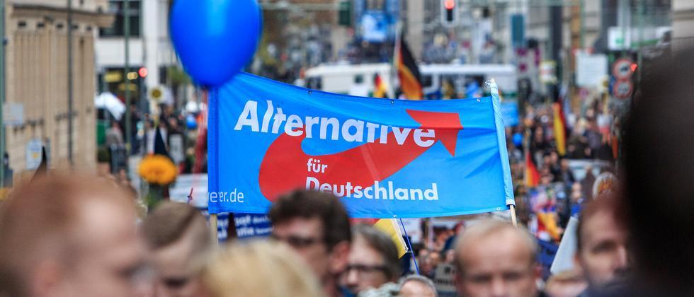 Thema Alternative für Deutschland AfD
