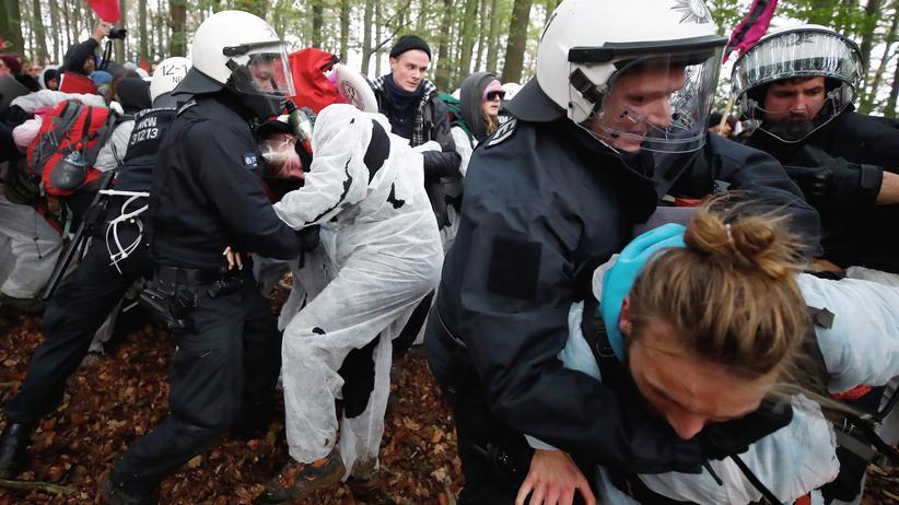 Hambacher Forst: Hunderte Strafanzeigen gegen Umweltaktivisten