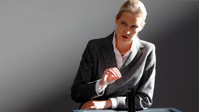 Wahlkampfspende: Alice Weidel schließt persönliche Konsequenzen aus