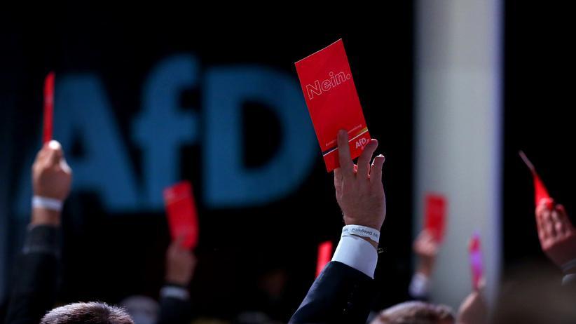 "Europawahl: AfD-Kandidatinnen beklagen ""EU-Albtraum"""