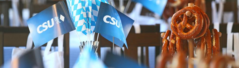 CSU Thema Header
