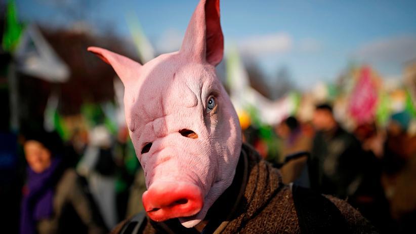 Agrarpolitik: Tausende protestieren gegen EU-Subventionen für Landwirtschaft