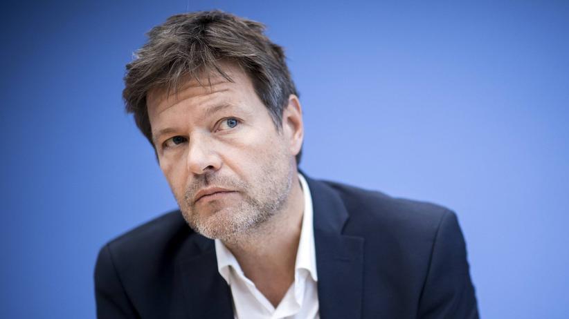Robert Habeck: Robert Habeck, Bundesvorsitzender der Grünen