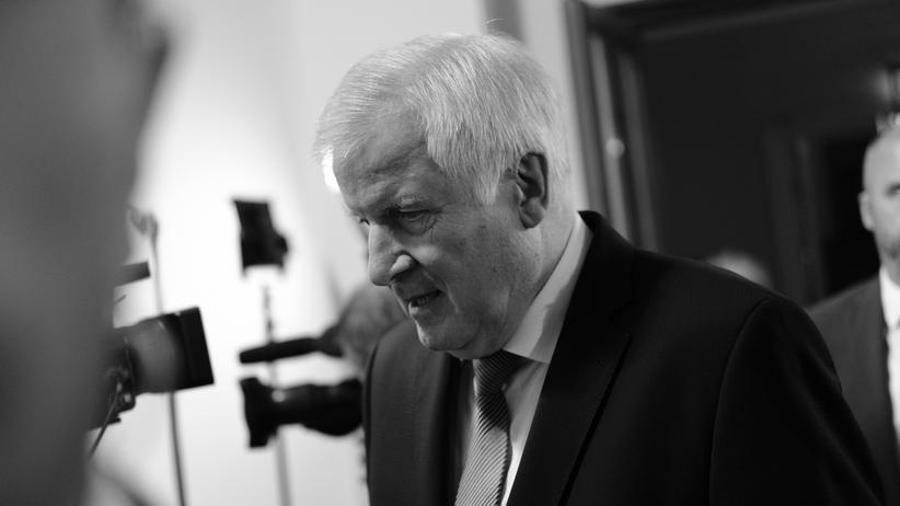Beobachtung der AfD: Horst Seehofer rechtfertigt Entscheidung des Verfassungsschutzes