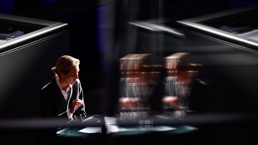 AfD-Spendenaffäre: Alice Weidel im Bundestag