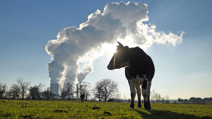Klimaschutz: Koalitionäre gegen CO2-Steuer auf Kraftstoffe