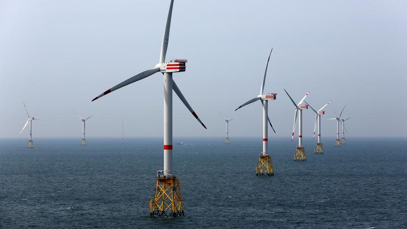 Klimaschutz: Thüringens CDU-Chef fordert Bund-Länder-Konzept zur Klimapolitik