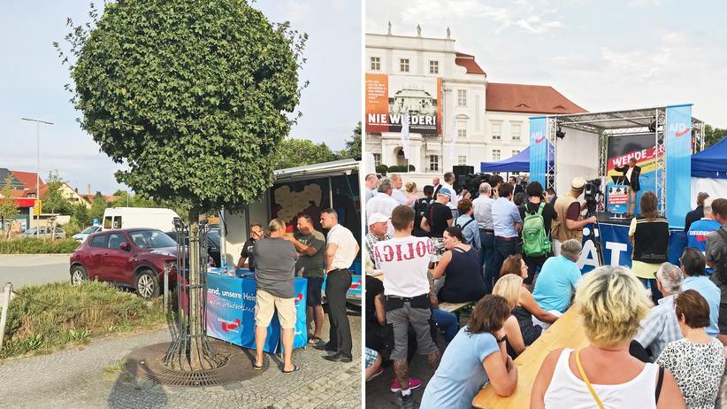 AfD: AfD-Kandidat Sebastian Wippel an seinem Wahlkampfmobil auf einem Discounterparkplatz in Reichenbach/Sachsen (l.) und AfD-Bundeschef Jörg Meuthen als Wahlkampfunterstützer auf der Bühne vor dem Schloss Oranienburg in Brandenburg