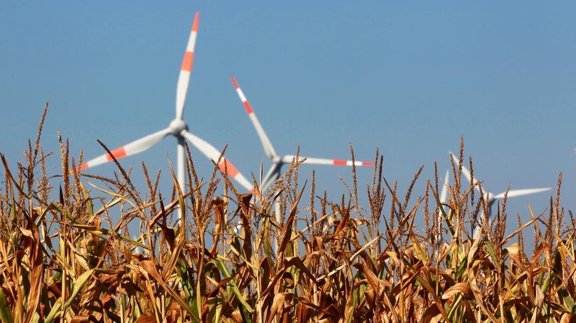 Steuer: Schleswig-Holstein kündigt Widerstand gegen Klimapaket an