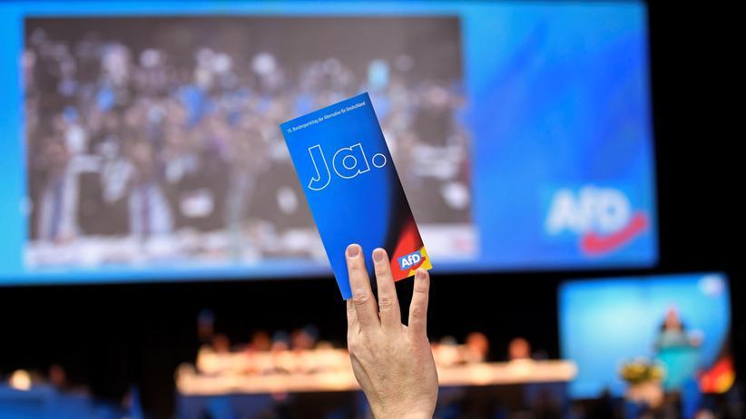 AfD-Vorstandswahl: Abstimmung beim Bundesparteitag der AfD in Braunschweig