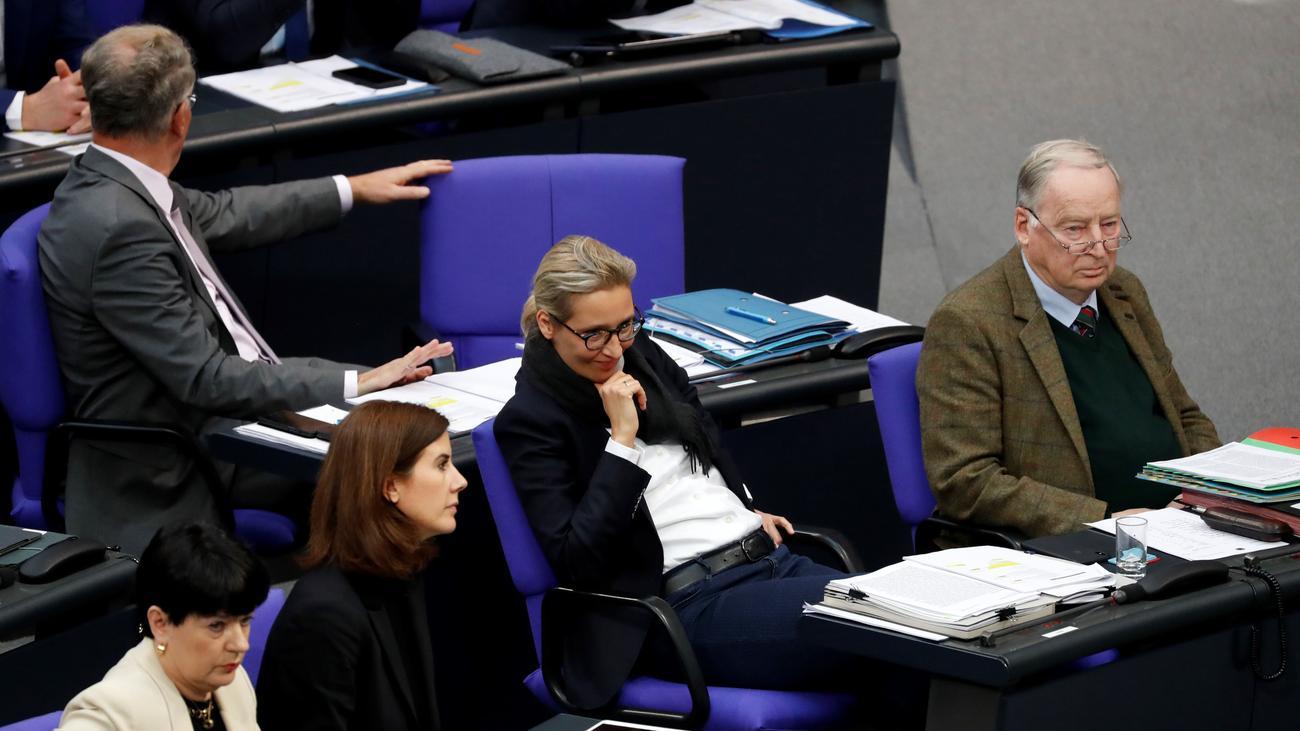 AfD-Fraktion Bundestag: Politik auf verlorenem Posten