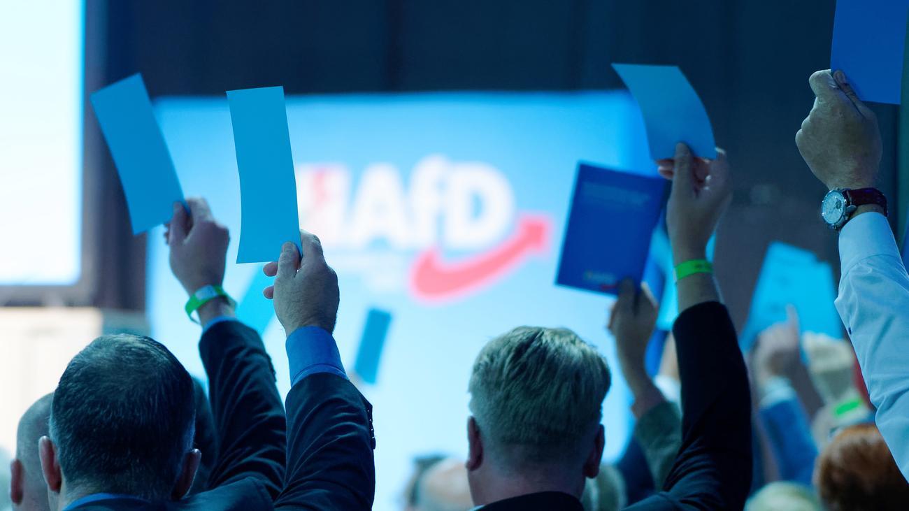 Bundesparteitag Afd 2021