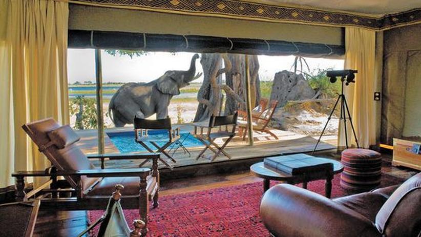 Luxustourismus in Afrika: Im Camp Zarafa in Botswana