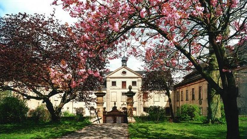Die Veranstaltungen im Kloster Dalheim sind Island und seiner Sagenwelt gewidmet
