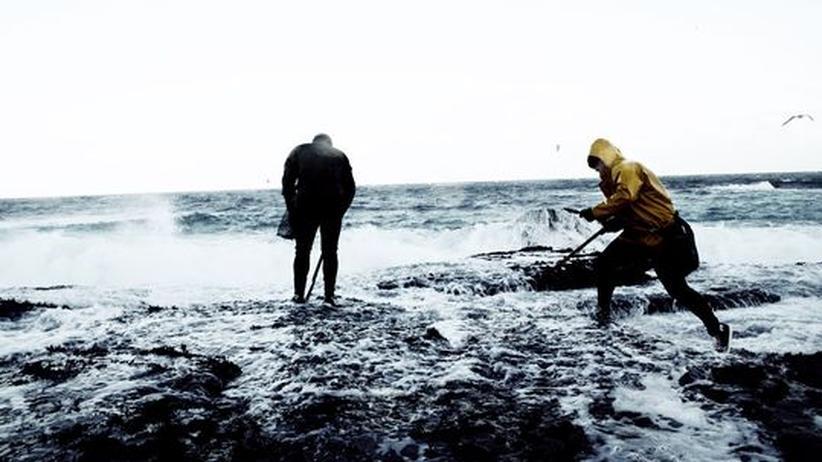 Muschelsucher in der Brandung an der Costa de Morte