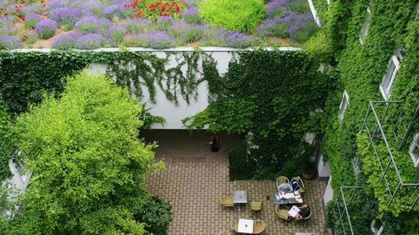 Nachhaltigkeit: Nullrunde für Hotels