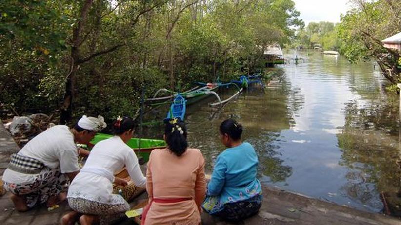 Gläubige beten in einem Mangrovenwald bei Denpasar