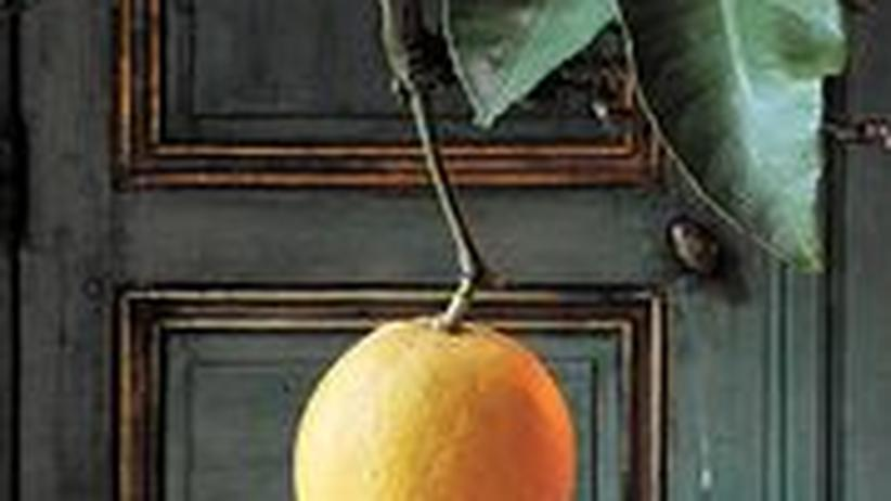 Im Speisesaal des Schlosses wachsen Zitronen.
